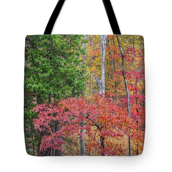 Dogwood And Cedar Tote Bag