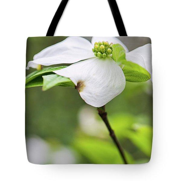 Dogwood Blossom Standing Tote Bag