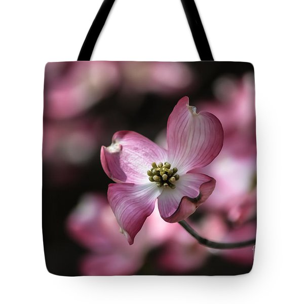 Tote Bag featuring the photograph Dogwood  by Brenda Bostic