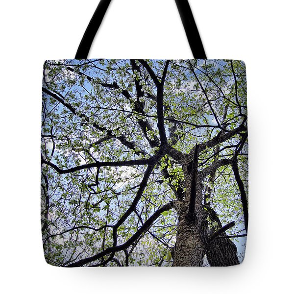 Dogwood Canopy Tote Bag