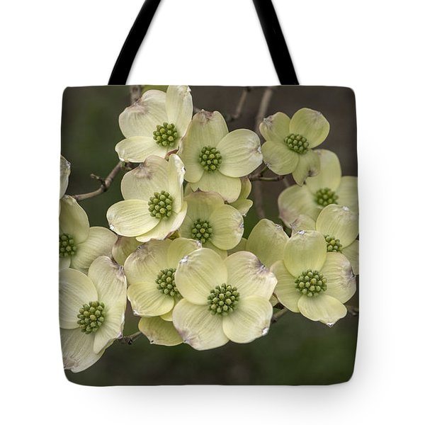 Dogwood Dance In White Tote Bag by Don Spenner