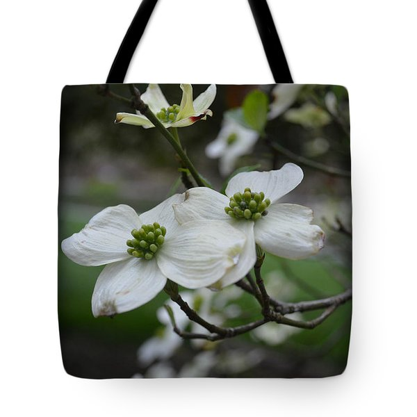 Tote Bag featuring the photograph Dogwood by Linda Geiger