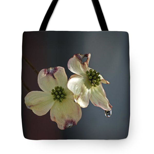 Tote Bag featuring the photograph Dogwood Tear by Elsa Marie Santoro