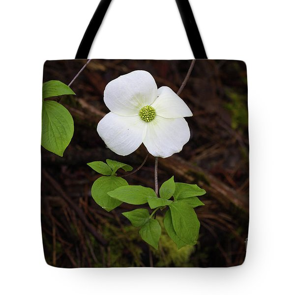 Tote Bag featuring the photograph Dogwood by Vincent Bonafede