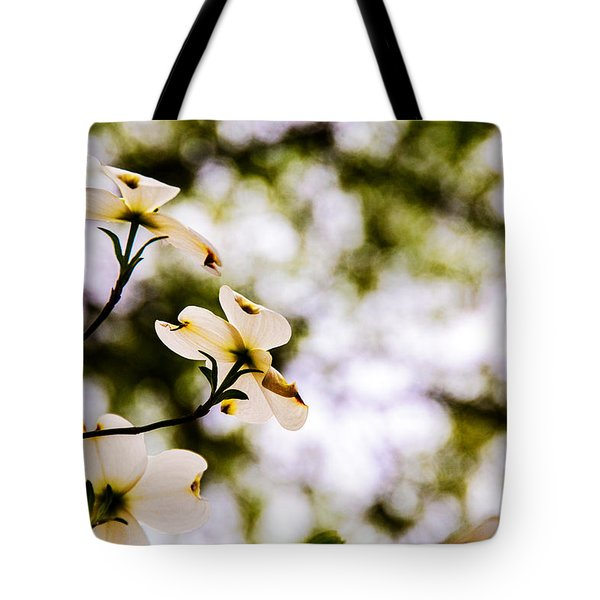Tote Bag featuring the photograph Dogwoods Under The Pines by John Harding