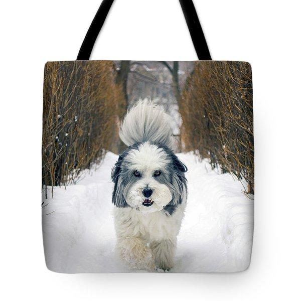 Doing The Dog Walk Tote Bag by Keith Armstrong
