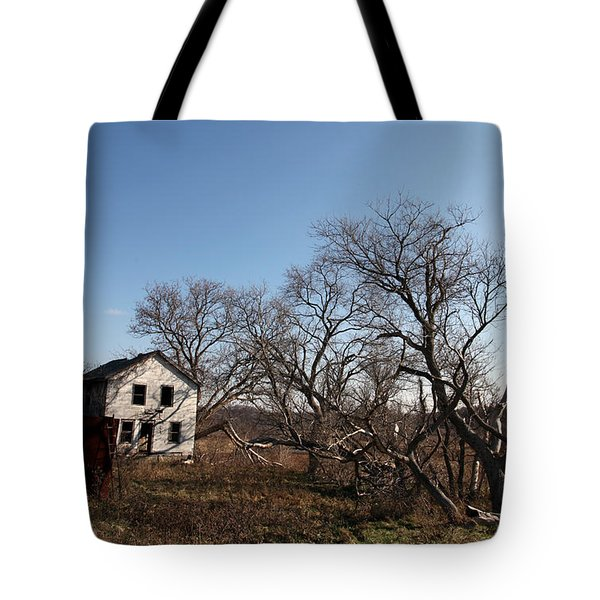 Dollhouse Tote Bag by Amanda Barcon