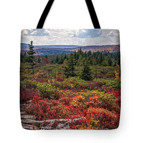 Dolly Sods Wilderness In Autumn 4273 Tote Bag