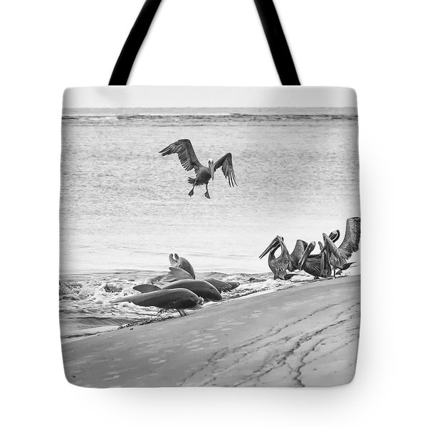 Dolphin And Pelican Party Tote Bag
