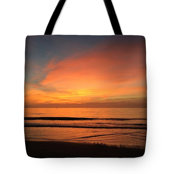 Dolphin Cesar Tote Bag