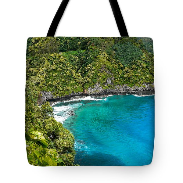 Tote Bag featuring the photograph Dolphin Cove by Debbie Karnes