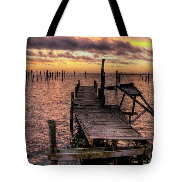 Dolphin Dock Tote Bag by John Loreaux