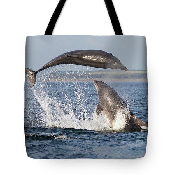 Dolphins Having Fun Tote Bag