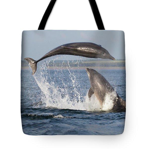 Dolphins Having Fun Tote Bag