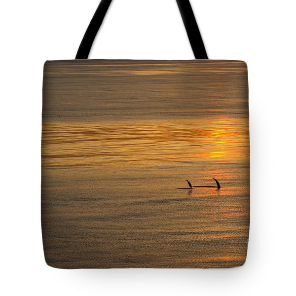 Dolphin Sunset Tote Bag