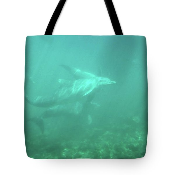 Tote Bag featuring the photograph Dolphin Swim by Francesca Mackenney