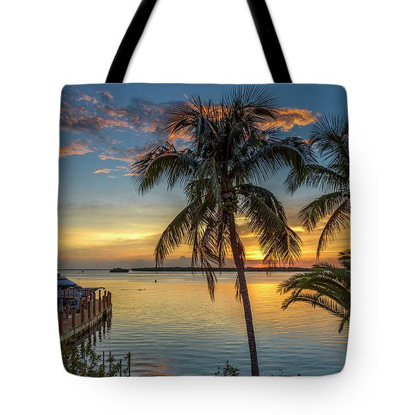 Tote Bag featuring the photograph Dolphins In San Carlos Bay by Steven Sparks