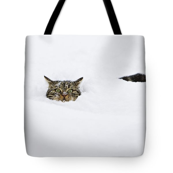 Domestic Cat Felis Catus In Deep Snow Tote Bag