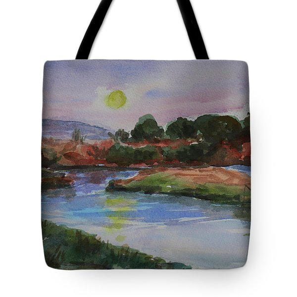 Tote Bag featuring the painting Don Edwards San Francisco Bay National Wildlife Refuge Landscape 1 by Xueling Zou