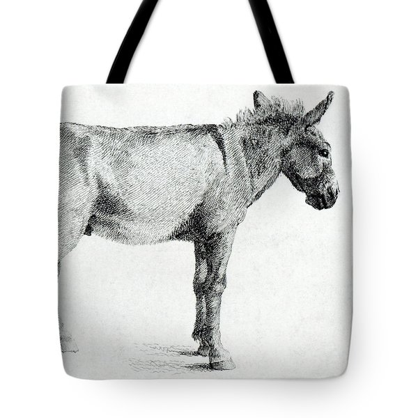 Donkey Tote Bag by George Stubbs