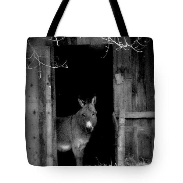 Donkey In The Doorway Tote Bag