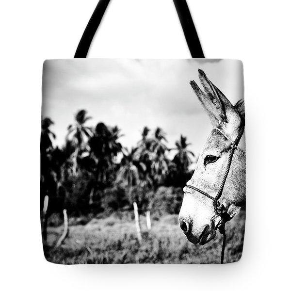Donkey Tote Bag