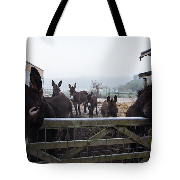 Donkeys Tote Bag by Dawn OConnor