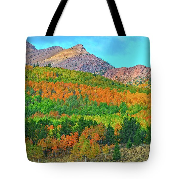 Don't Be Impressed By Followers And Possessions. Be Impressed By Kindness, Humility, And Integrity.  Tote Bag