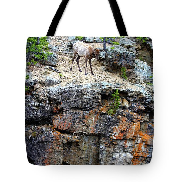 Tote Bag featuring the photograph Don't Jump by Shane Bechler
