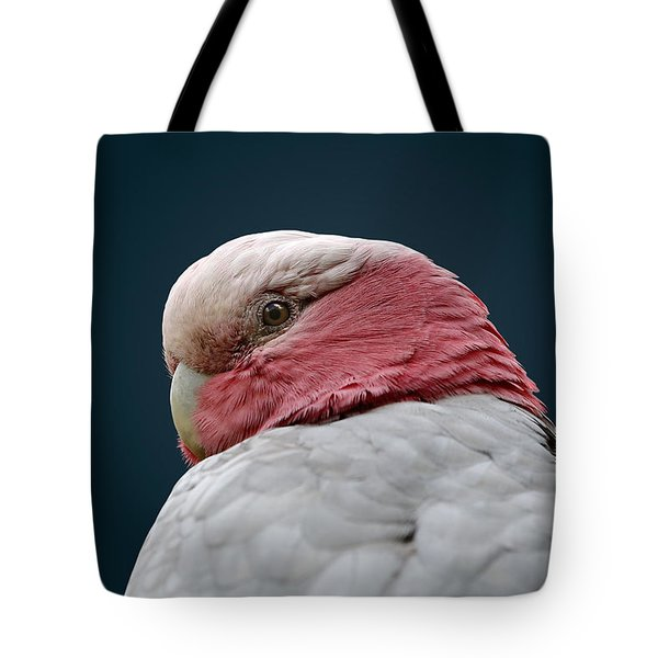 Don't Sneak Up On Me Tote Bag