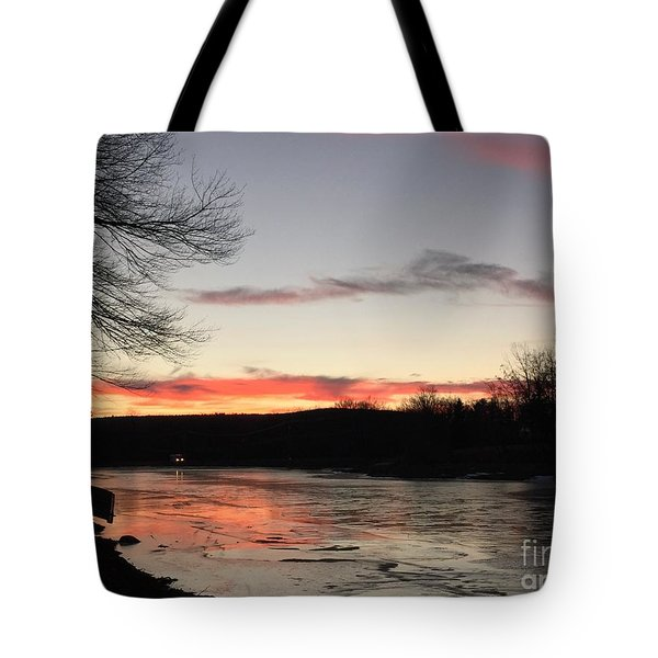 Don't  T 'red' On Thin Ice Tote Bag by Jason Nicholas