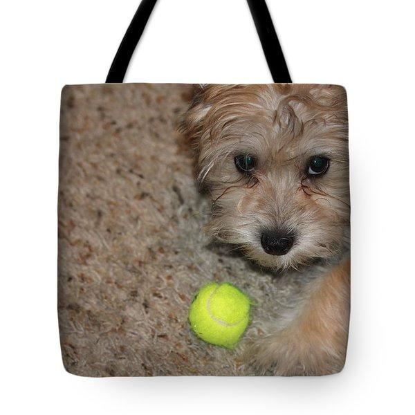 Don't Take My Ball Tote Bag