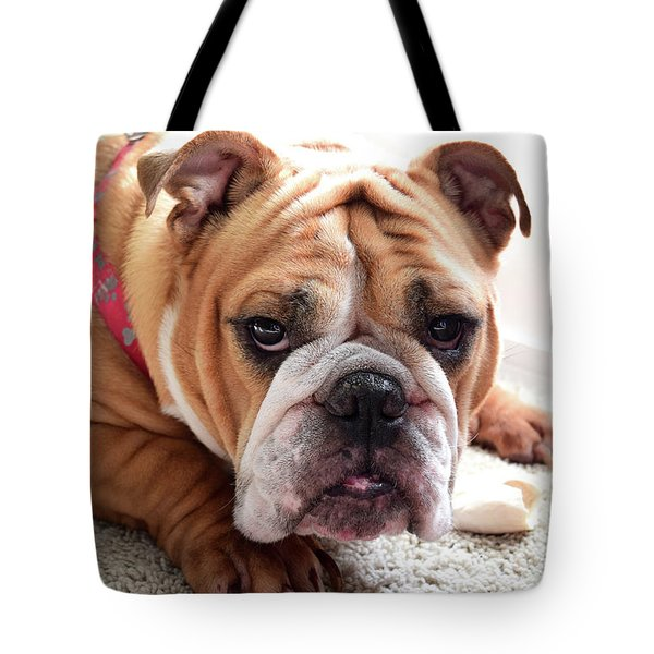 Don't Touch My Bone Tote Bag