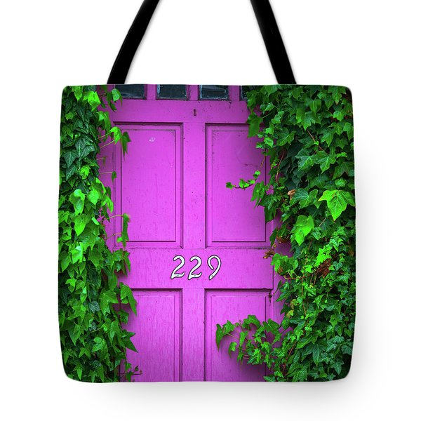 Door 229 Tote Bag by Darren White