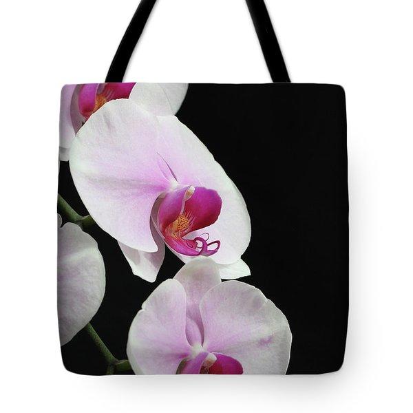 Doritaenopsis Mount Lip Fangtastic Orchid Tote Bag