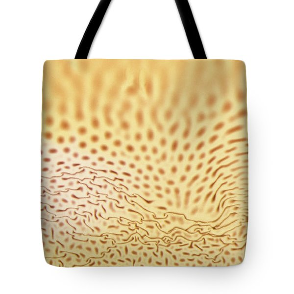 Dots And Lines Tote Bag