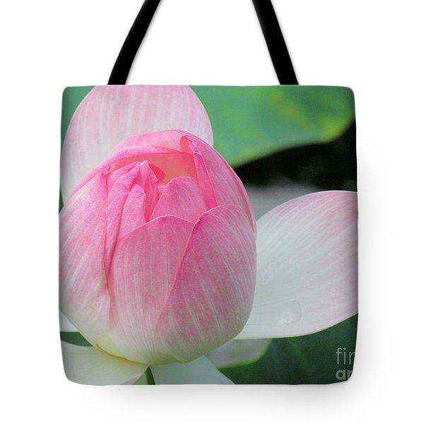 Dotus On The Lotus  Tote Bag