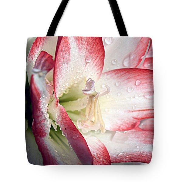 Double Amaryllis Tote Bag