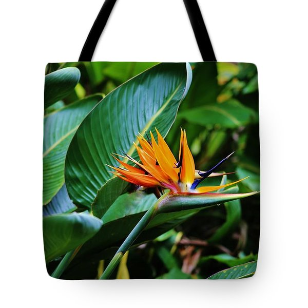 Tote Bag featuring the photograph Double Bird Of Paradise by Craig Wood