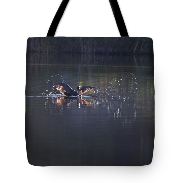 Tote Bag featuring the photograph Double Crested Cormorant by Margarethe Binkley