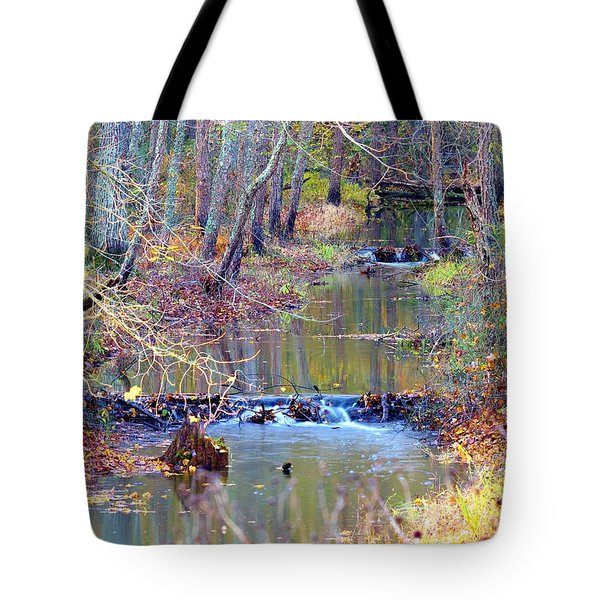 Double Falls Tote Bag