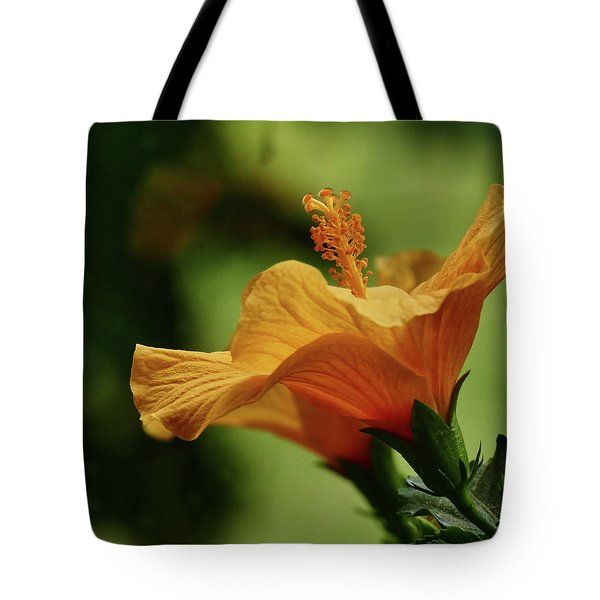 Double Grace Tote Bag by Evelyn Tambour