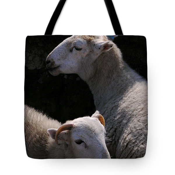 Tote Bag featuring the photograph Double Portrait by Harry Robertson