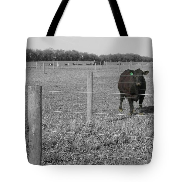 Tote Bag featuring the photograph Double Post by Dylan Punke