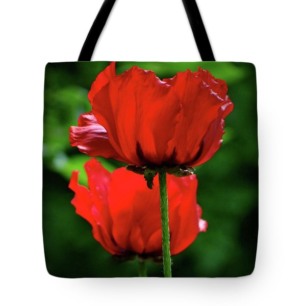 Double Red Poppies Tote Bag