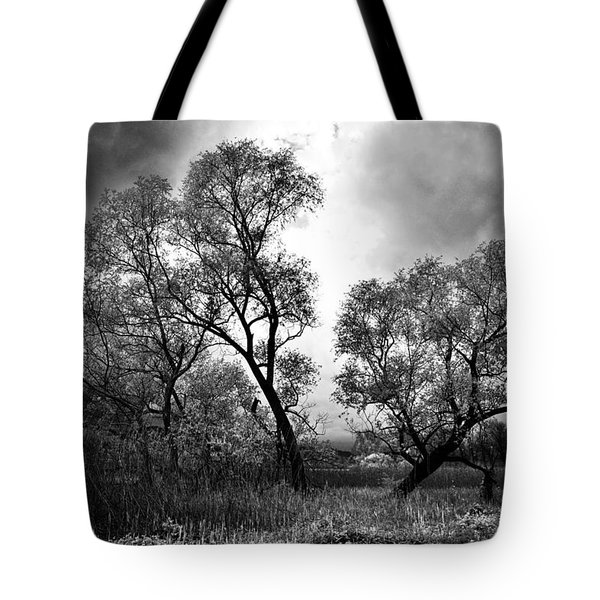 Double Tree Tote Bag
