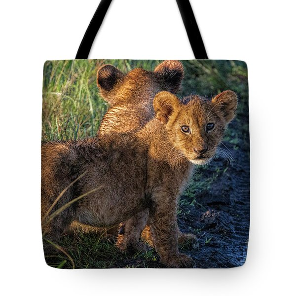 Tote Bag featuring the photograph Double Trouble by Karen Lewis
