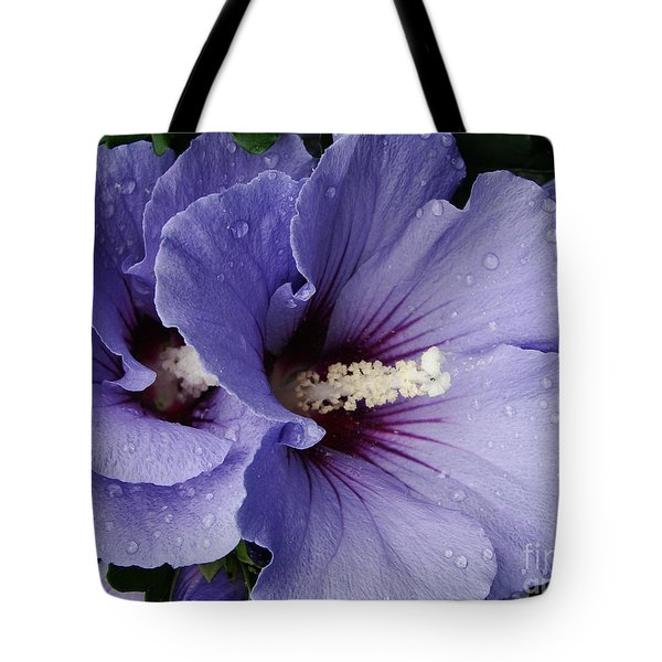 Double Trouble Tote Bag by Priscilla Richardson