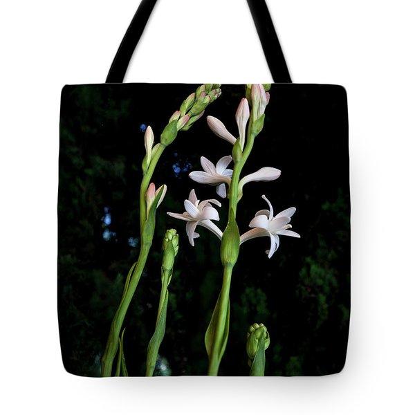 Double Tuberose In Bloom Tote Bag
