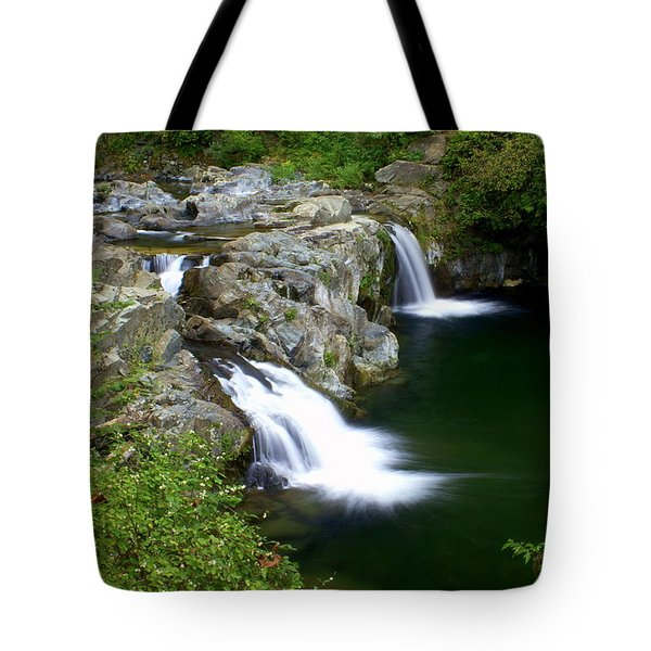 Double Twin 2 Tote Bag by Marty Koch